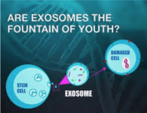 System Exosome Regenerative Medicine treatments at Simply Men's Health REJUVAnation Medical Center Palm Beach, Boca Raton, Miami