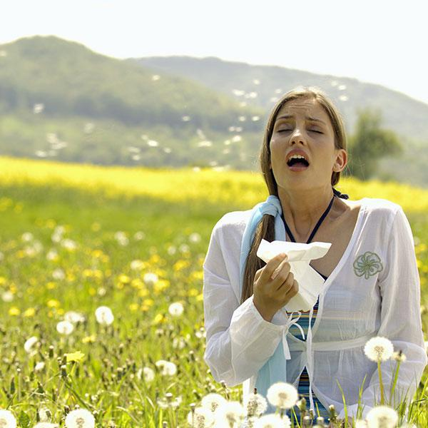 Hay Fever service image