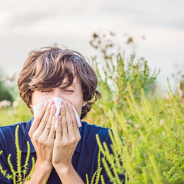 Seasonal Allergies service image