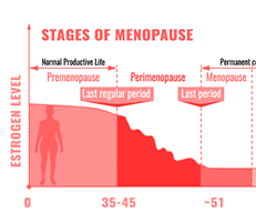 Menopause Pain, Symptoms and Support