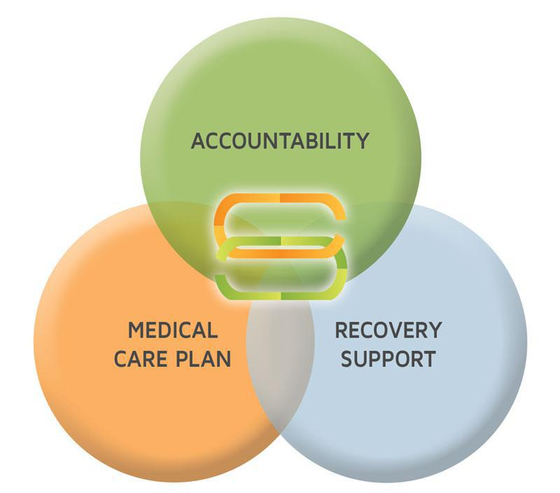 Diagram showing accountability, Medical Care Plan, and Recovery Support