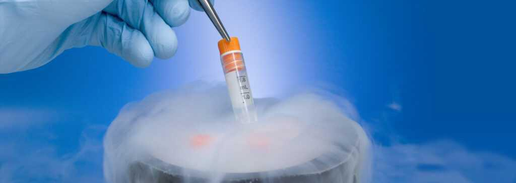 Further evidence that cryopreservation reduces pregnancy chances in IVF
