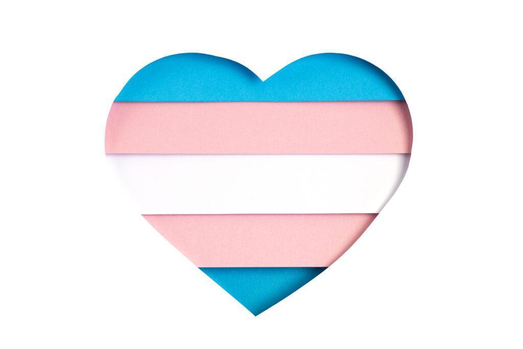 transgender awareness heart