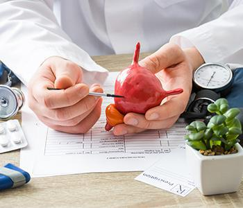 Doctor Explaining Bladder Cancer