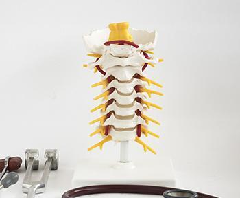 Spinal Cord Stimulator Breakdown