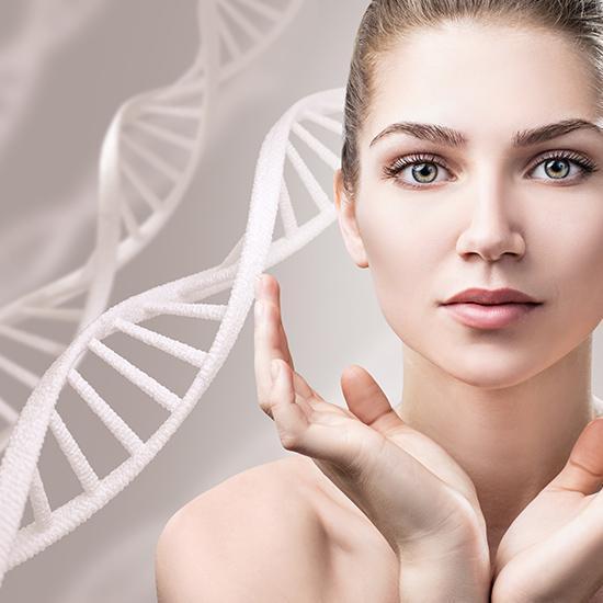 Células madre: efecto reperador, regenerador y Antienvejecimiento ...