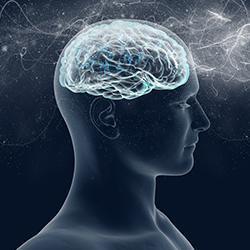 The Hammett Clinic: Neurology Specialists: Columbia, SC