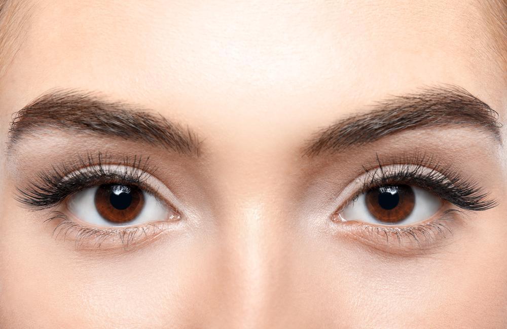 Eyelash And Eyebrow Enhancement Specialist - Kingston, NY ...