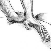 Steven Perry, DC -  - Chiropractor