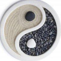Center for Acupuncture & Integrative Medicine -  - Acupuncturist