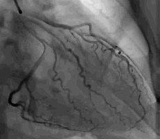 Excel Medical Imaging: Diagnostic Radiologists: New Port