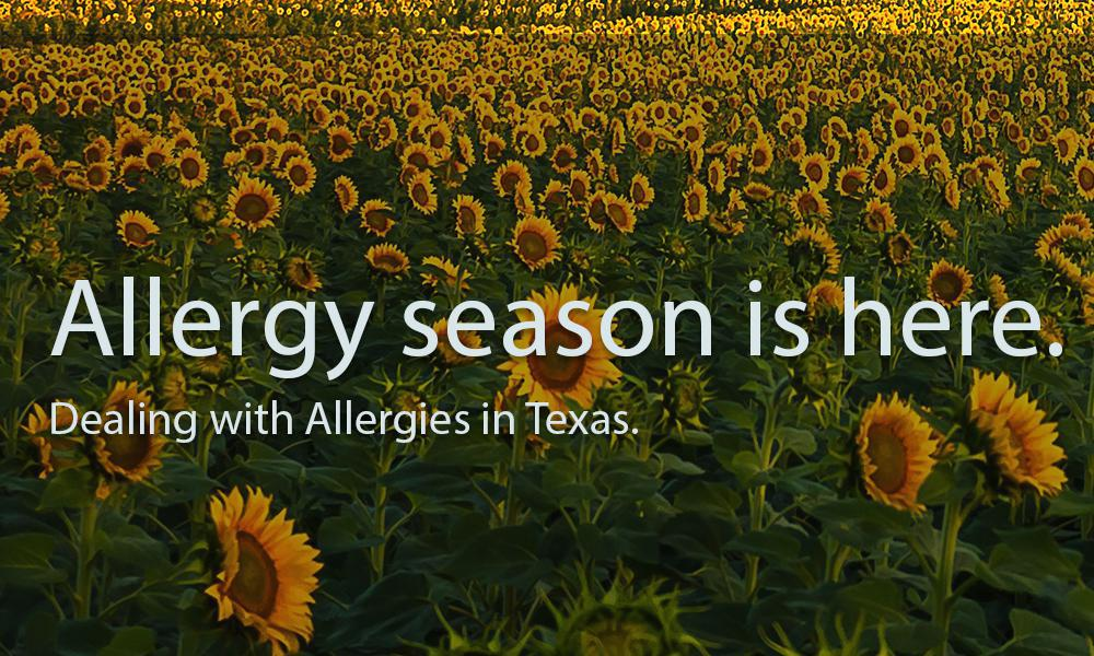 Dealing with Allergy Season in Texas: Your Options: Family