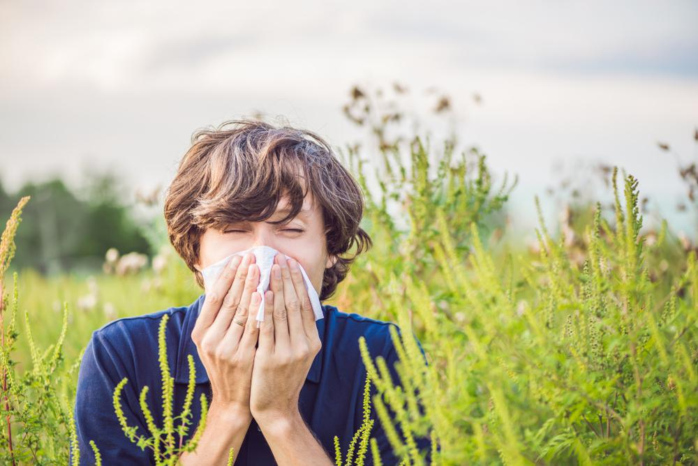 Ten Tips To Treat Seasonal Allergies: Golden Gate Urgent