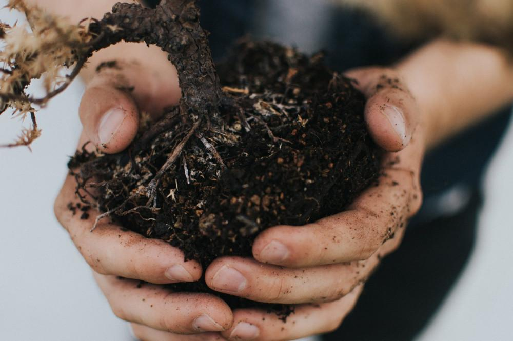 Our Bodies, Our Soil