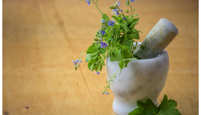 Homeopathy: Treatment for Chronic & Acute Illness Without Side