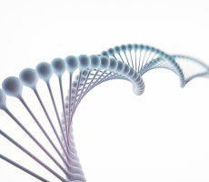 PGD (Pre-Implantation Genetic Diagnosis)