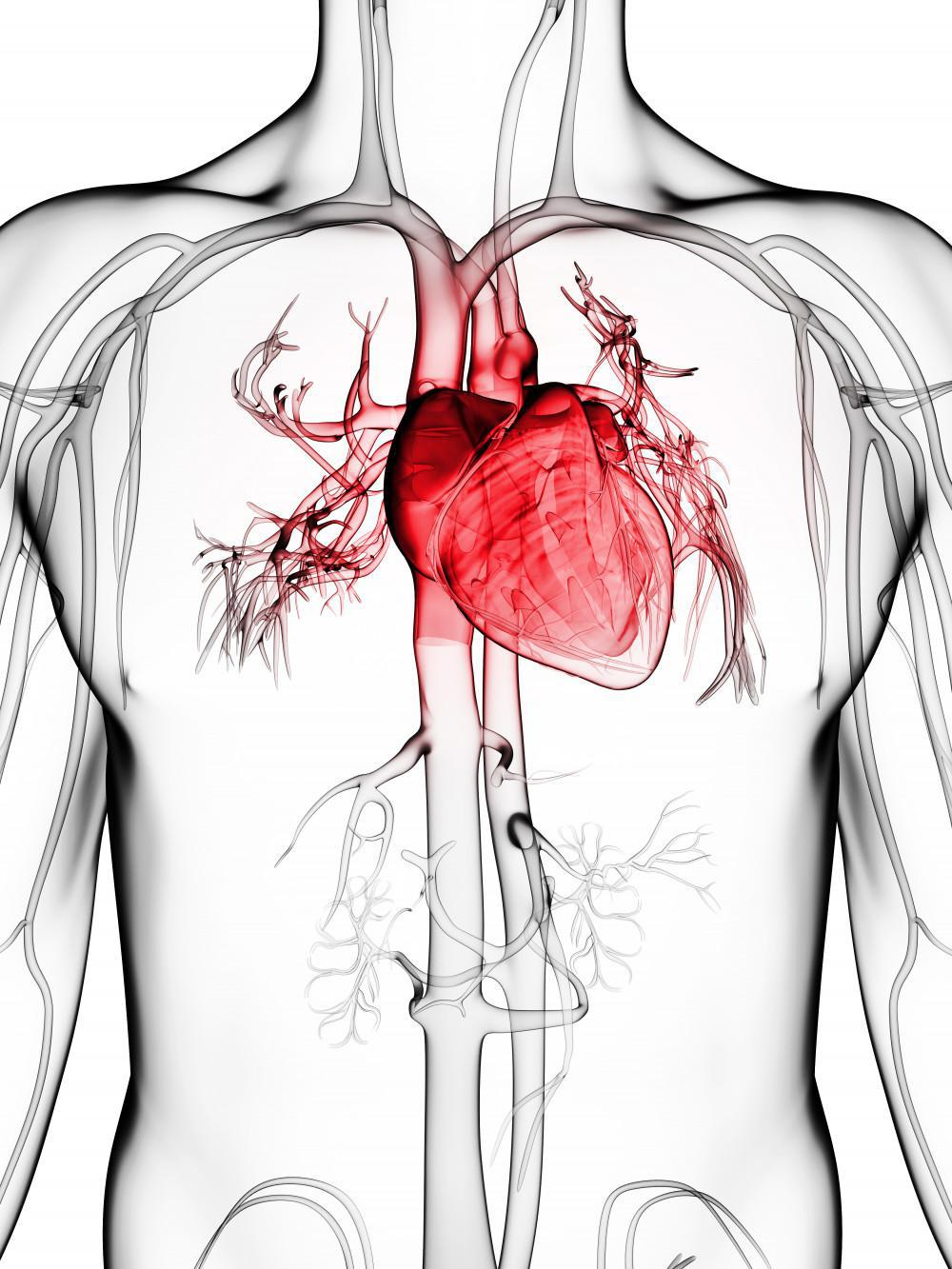chest pain, heart attack, california heart and vein specialists