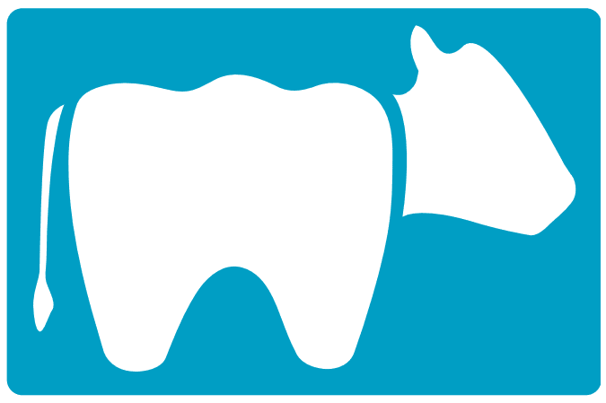 Teeth Whitening Specialist Cow Hollow San Francisco Ca Cow