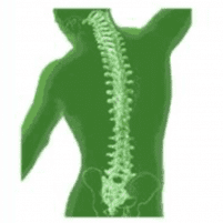 Interventional Pain Management Services -  - Pain Management