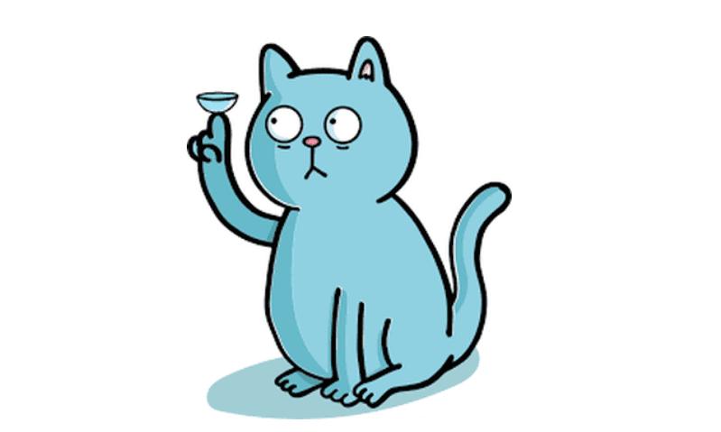 cat w contact lens