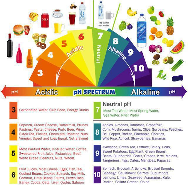 Should I try alkaline diet?