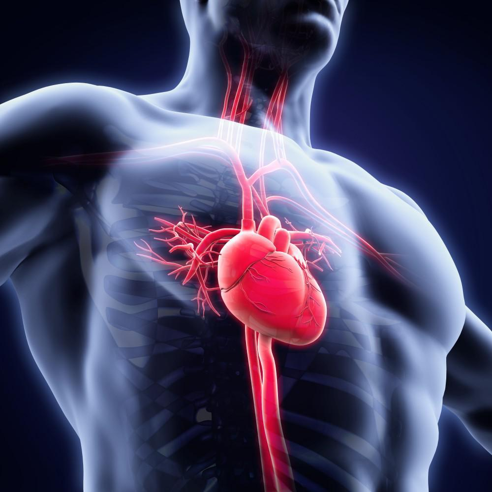 What Is Svt >> Svt Could Be The Cause Of Your Racing Heart Premier