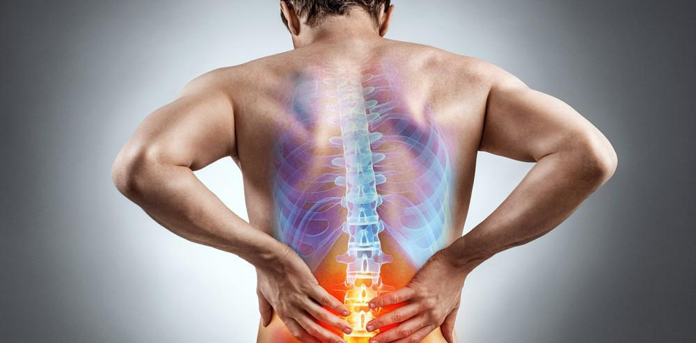 Physical Therapy Can Reduce Your Low Back Pain