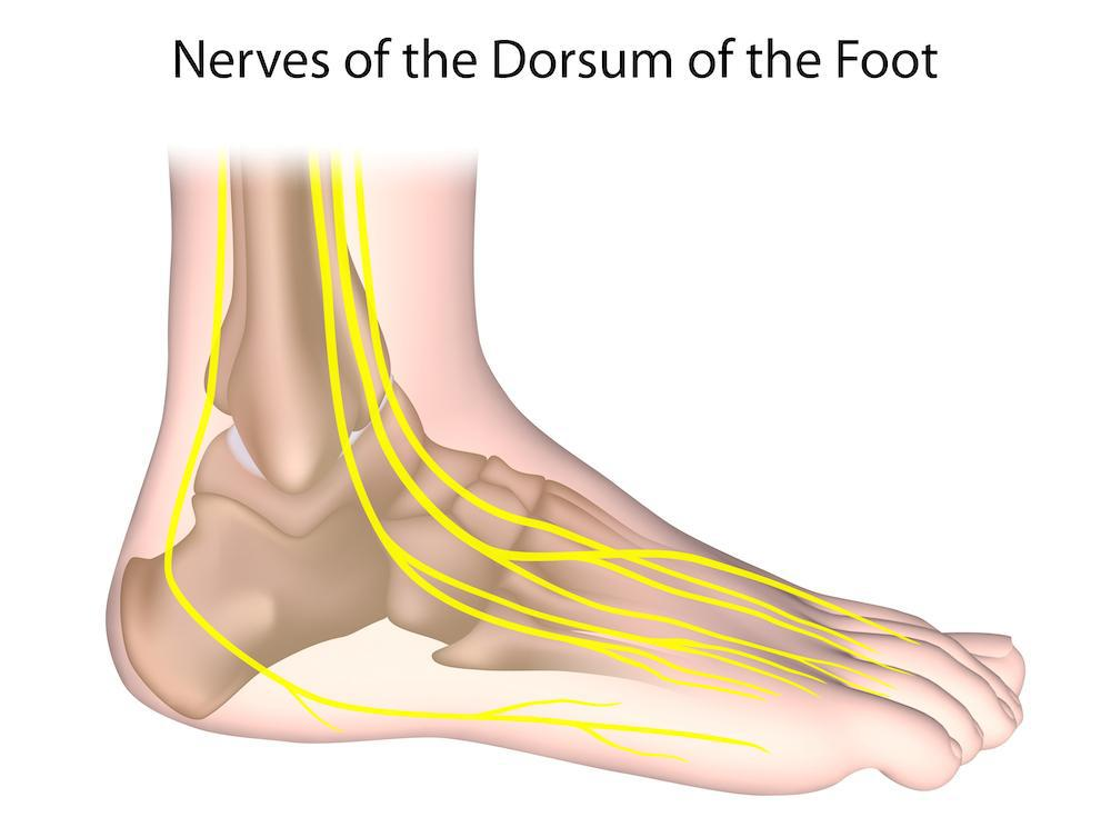 Diabetes has systemic effects throughout the body, oftentimes in your feet and toes. Nerve damage is one of the most dangerou