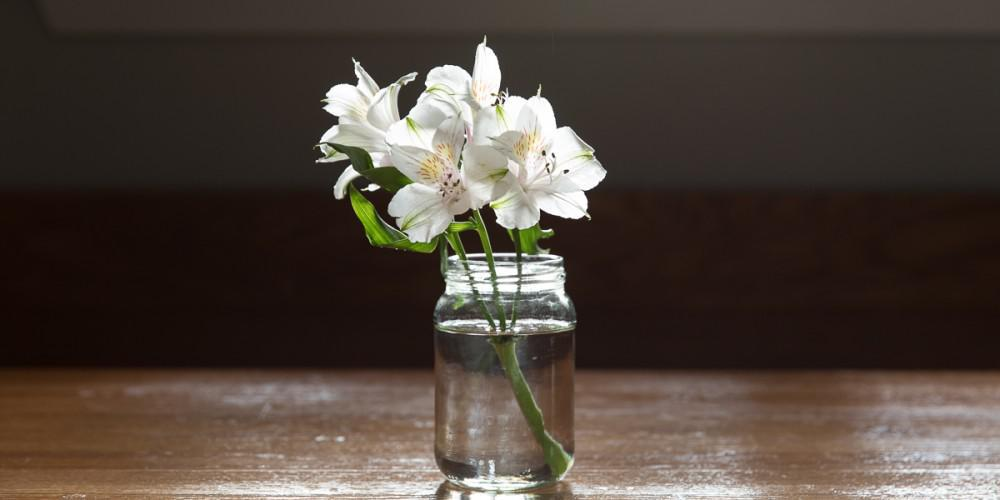 Flowers on a Table - Lone Star Infusion
