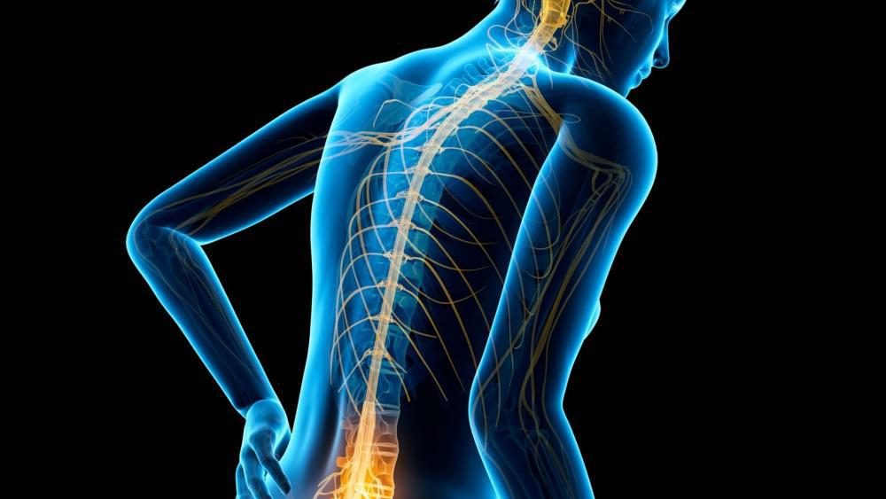 Spinal Cord Injuries and Physical Therapy