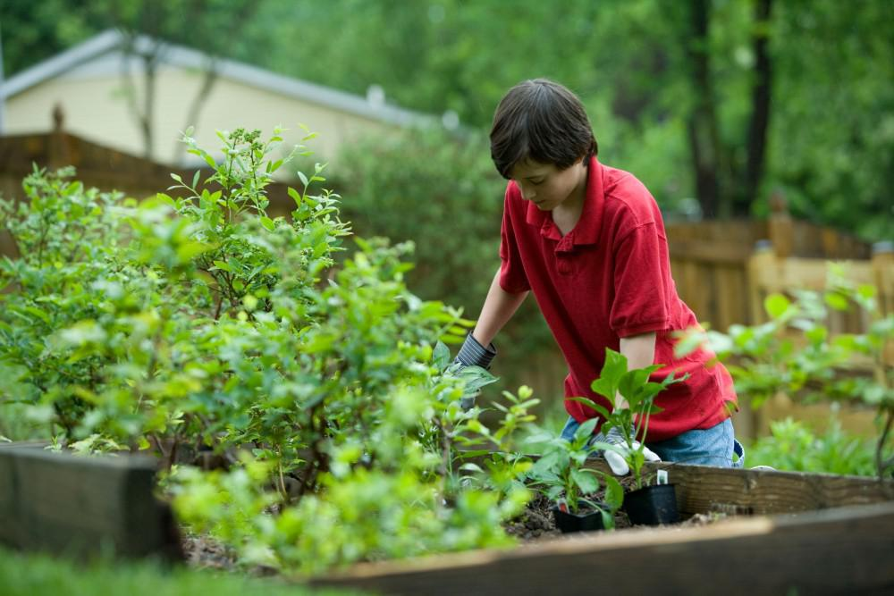 Woman working in a beautiful green garden