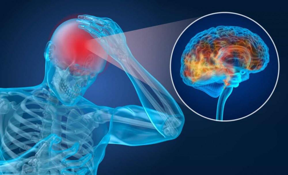 Concussion and your chiropractor