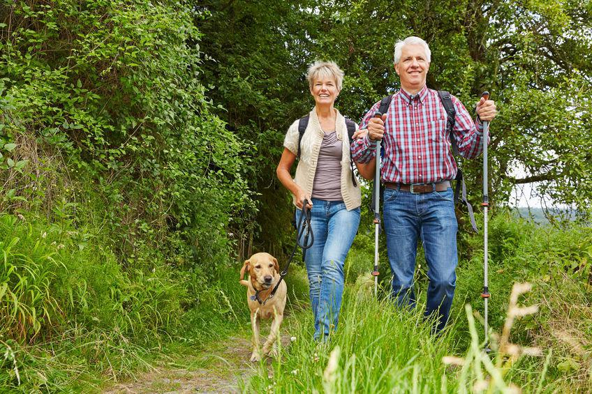couple hiking with their dog in natural park-like setting; hiking as outdoor activity