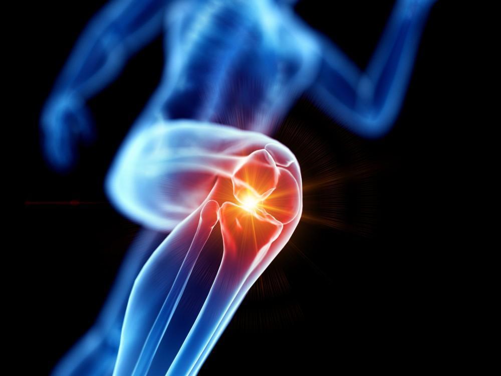 knee tissue