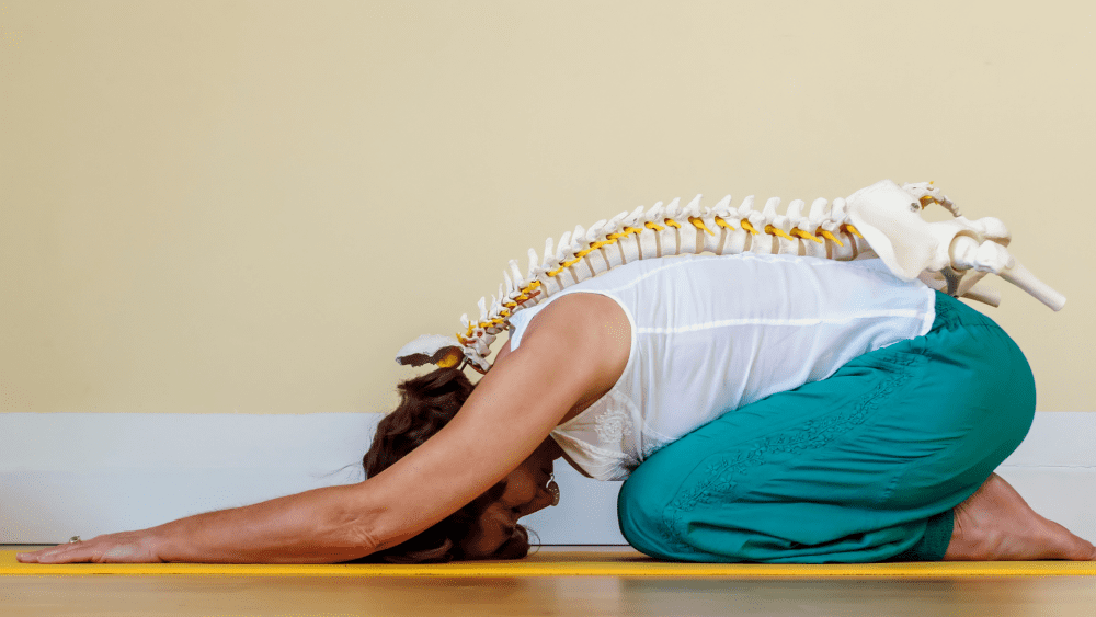 Spinal Rehabilitation with Physical Therapy