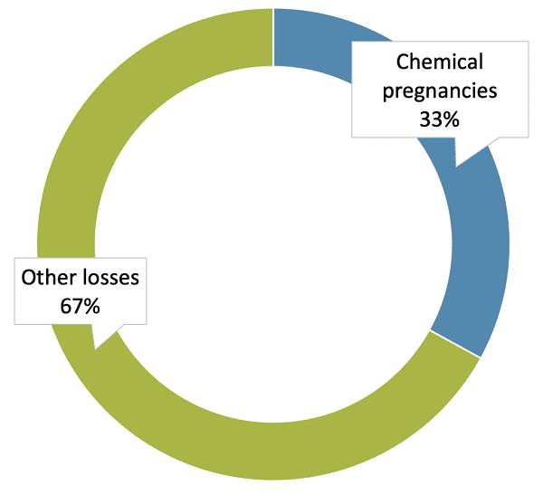 Causes of chemical pregnancies