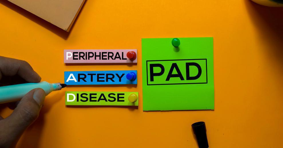 September Is PAD Awareness Month: Do You Know the Health of Your Arteries?