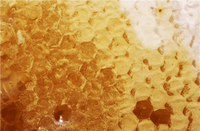 Is Manuka Honey Better Than Antibiotics