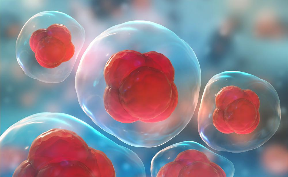 Enhance Your Healing With Stem Cell & Cellular Therapies
